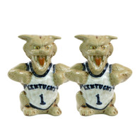 UK Wildcat Salt & Pepper Shakers