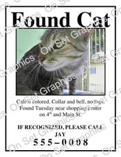 Found Cat 1