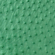 Ostrich Skin Leather - GREEN PEARL - 16.3 sq ft - Grade 1