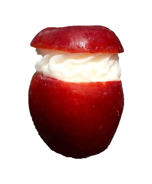 Red Apple Sorbet, made from freshly pureed apples, served in its original shell