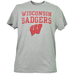 NCAA Wisconsin Badgers Gray Short Sleeve Tshirt Tee Mens Adult Crew Neck Sports