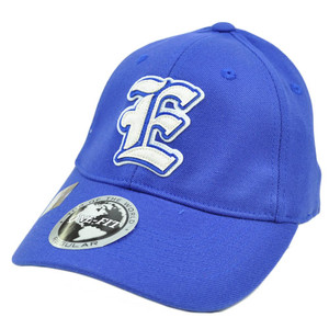 Eastern Illinois Panthers Applique Patch Hat Cap NCAA Flex Fit Stretch Top World