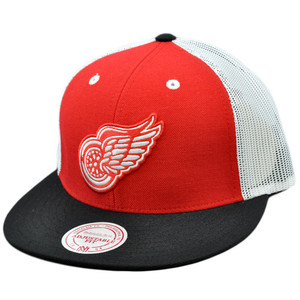 NHL Mitchell Ness Mesh Throwback Logo Snapback Hat Cap Detroit Red Wings NE35