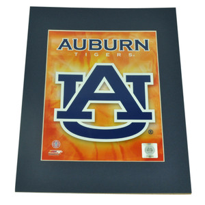 NCAA Auburn Tigers Photo 8x10 Picture Novelty Big Logo Photograph Team Colors