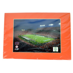 NCAA Auburn Tigers Photograph 8x10 Picture Novelty Team Field Stadium Framed