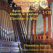 Domenico Severin: Historical Organs