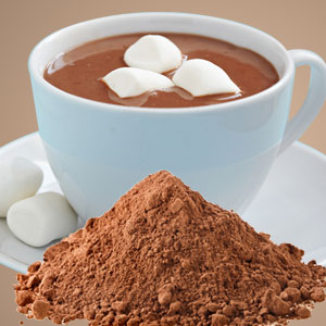 Hot Cocoa Wax Melts