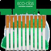 Eco-Cigs The Perfect Ten