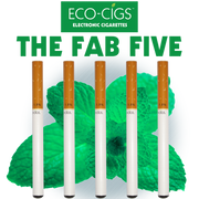 Eco-Cigs Disposable Menthol Electronic Cigarette The Fab Five