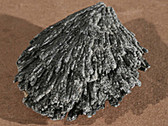 Black Kyanite Mineral Specimen