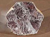 Mica Slice Mineral Specimen