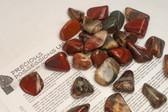 """Rainbow Jasper 1/4 Lb Tumbled Stones Size Small 1-2"""""""