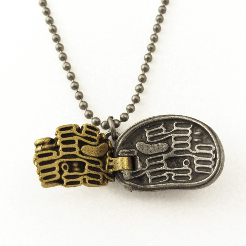 chloroplast necklace in open position