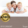 Ivy Union Premium Down Alternative Twin XL Comforter Set, Taupe