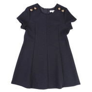 Chloe Navy Dress