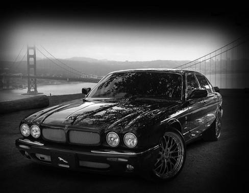Jaguar Xj8 Amp Xjr Lower Bumper Mesh Grille Kit Mina Gallery Inc