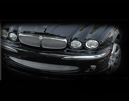 jaguar x type lower bumper mesh grille grill 2002 07 ss ebay. Black Bedroom Furniture Sets. Home Design Ideas