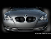 BMW 5 Series 3pcs Lower Mesh Grille 2008-2009