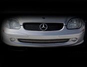 Mercedes SLK Lower Mesh Grille Kit 2001-2004 (Sport Pkg)