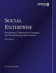 Social Enterprise (David Befus) - eBook