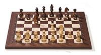 Electronic Chess Sets