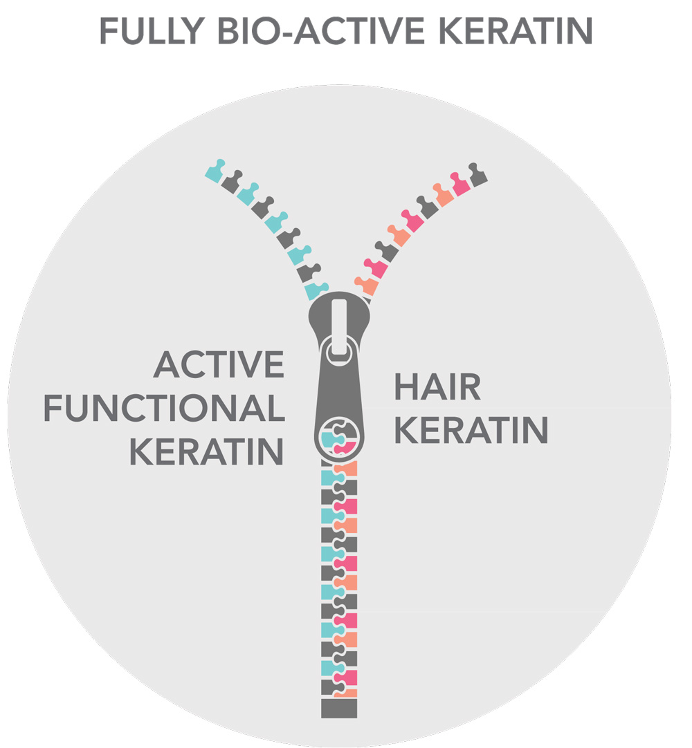 fully-bio-active-keratin-graphic
