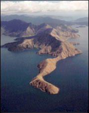 Drowned valley, Tawero Point, Pelorus Sound, Marlborough Sounds