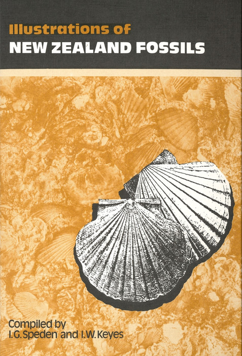 Illustrations of New Zealand fossils: New Zealand Geological Survey handbook
