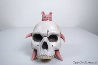Jeremy Fish Bunny Skull Get Small SF Front