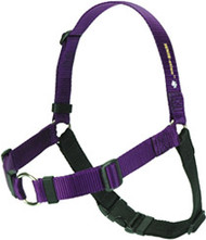 Sense-ation (TM) Harness (Black)