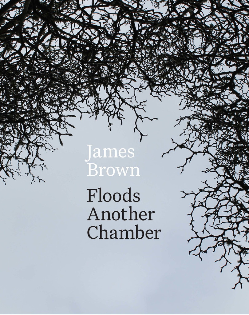 Floods Another Chamber