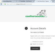 Google's new approach to website security - Coolhorsesocks.co.uk is compliant