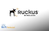 Ruckus WatchDog Support for ZoneDirector 5000, 600 AP License Upgrade, 801-5600-1L00, 801-5600-3L00, 801-5600-5L00
