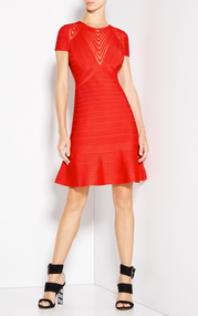 Herve Leger Hillary Tulle Applique Dress