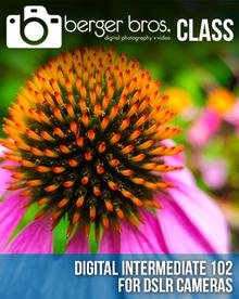 02/24/17 - Digital Intermediate 102 for DSLRs