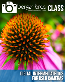 03/06/17 - Digital Intermediate 102 for DSLRs