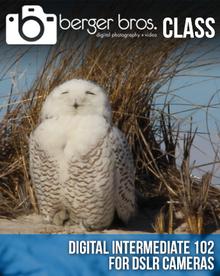 04/13/17 - Digital Intermediate 102 for DSLRs
