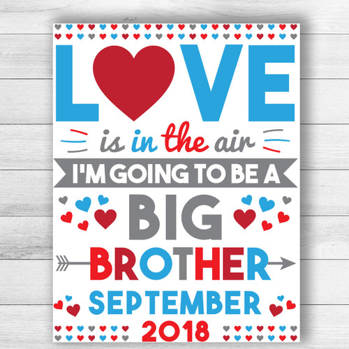 Love Is In The Air Valentine's Day Big Brother Announcement Sign