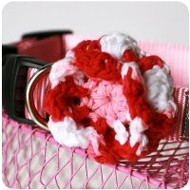 Be Mine Collar Flower for Dogs
