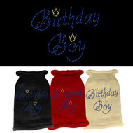 Birthday Boy Rhinestone Dog Sweater (Multiple Colors)