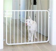 Auto Lock Dog Gate