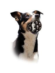 Large Tennis Ball 2 pk - Skull Dog Toy