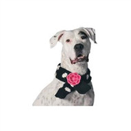 Flower Polkadot Dog Scarf