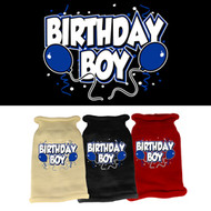 Birthday Boy Knit Sweater (Various Colors)