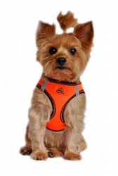 Iridescent Orange Top Stitch American River Choke Free Dog Harness