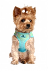 Aruba Blue Ombre American River Choke Free Dog Harness