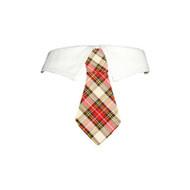 Carter Dog Shirt Collar