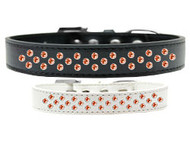 Rim-Set Orange Crystal Dog Collar