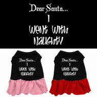 Dear Santa I Went With Naughty Dog Dress