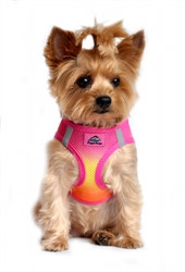 Raspberry Pink and Orange Ombre American River Choke Free Dog Harness